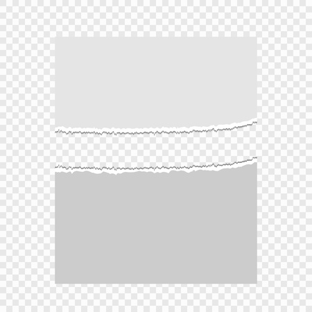 Pieces of torn paper on a transparent background. Vector illustration for your design. Eps 10.