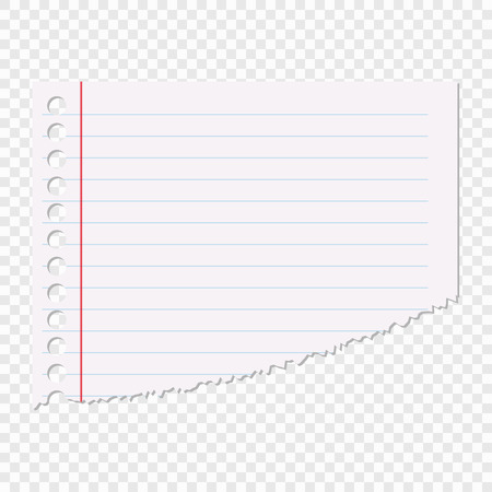Portion of the sheet of paper in a line isolated on a transparent background. Vector element for your design. Eps 10. Illustration