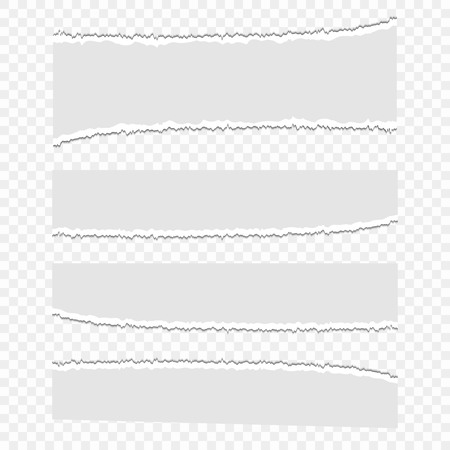 Set of vector paper scraps on a transparent isolated background. Pieces of paper, garbage. Pieces of torn paper. Eps 10.