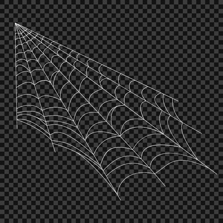 Cobweb. Vector spider web. Design elements on an isolated transparent background. Eps.