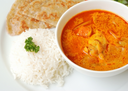 chicken curry bowl serves with rice and roti, close up top view photo