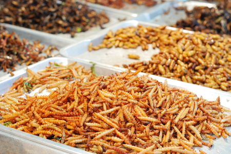 many kind of deep fried insects in Thailand market