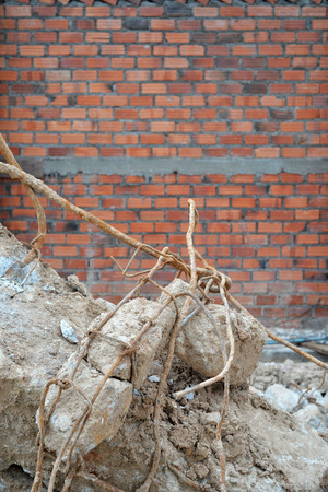 demolished house: Construction waste debris, garbage bricks from demolished house Stock Photo