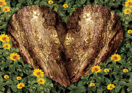 LOVE WOOD and Flowers