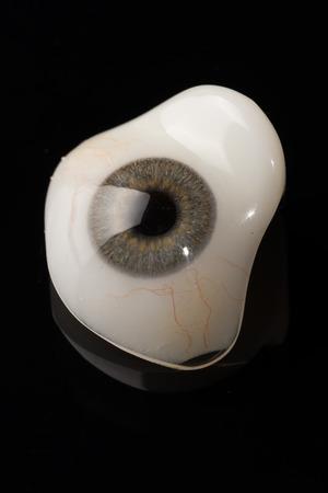 prosthetic: Glass eye prosthetic or Ocular prosthesis with reflection on black