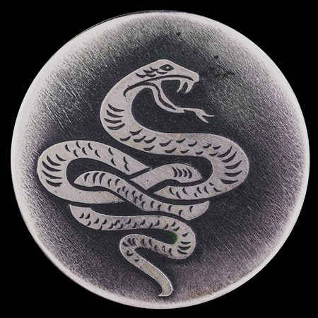 sliding scale: The snake - a symbol of wisdom and vitality, the guardian of life and health.