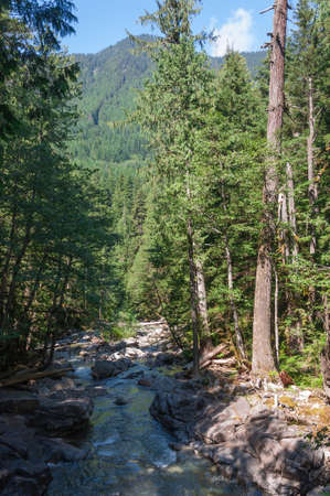 I had took this photo of Tye River in the Deception Falls area (WA, USA). Looking opposite the road. Banco de Imagens