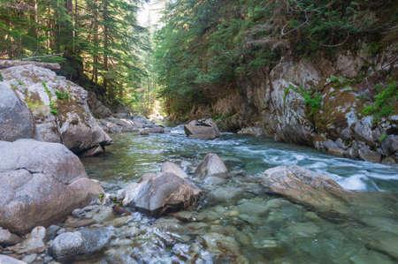 I had took this photo of Tye River in the Deception Falls area (WA, USA). Stock Photo