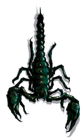 cartoon scorpion: Scary scorpion isolated on white for t-shirt prints and tattoos