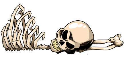 Skeleton parts.