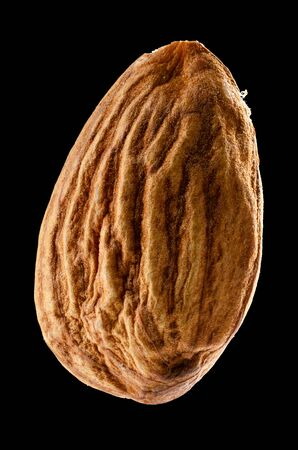 Single Almond Isolated on Black Background With Clipping Path