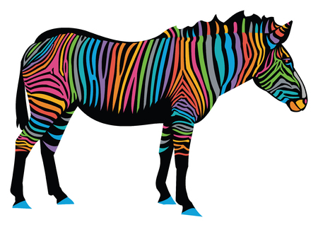 Zebra with Rainbow Stripes.