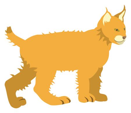 Orange cat Иллюстрация