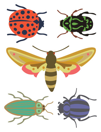 Set of Bugs - Three Bug, a ladybug and a moth on white background, vector illustration. Иллюстрация