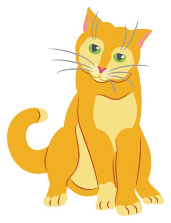 Orange tom cat on white background, vector illustration.