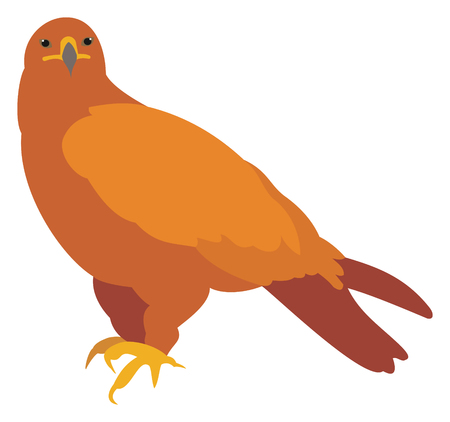 Golden eagle on white background, vector illustration.