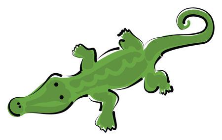 白い背景、ベクトル図の緑のワニ。