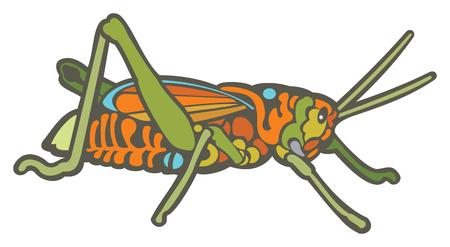 Grasshopper in colorful cartoon clip art illustration. Illustration
