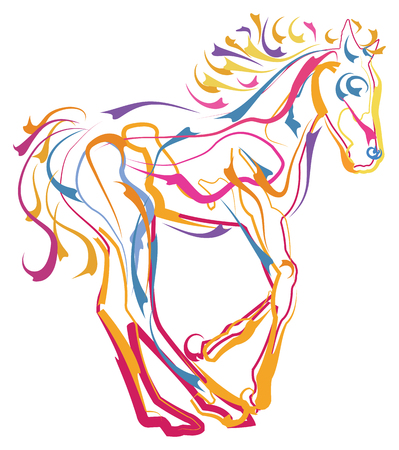Colorful Pony in Motion
