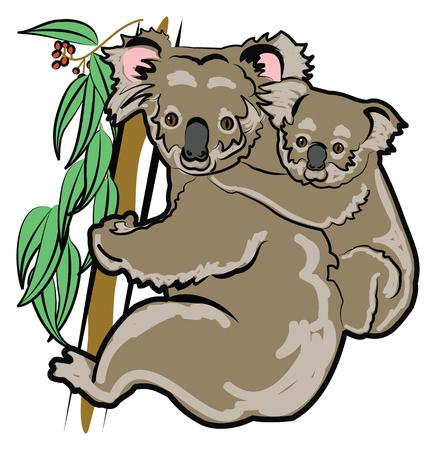 Mother Koala and Baby Koala Bear in a Eucalyptus Tree