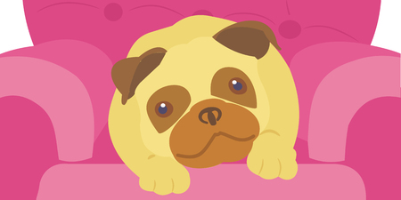 Pug Dog Lying on a Pink Chair in colorful cartoon clip art illustration.