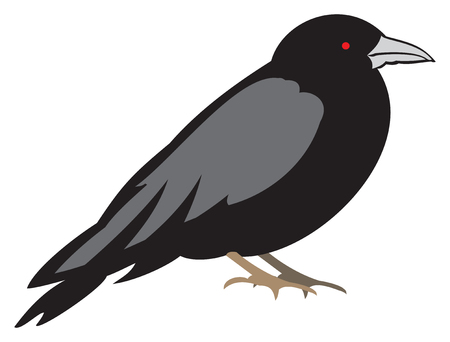 Black Raven with Red Eyes