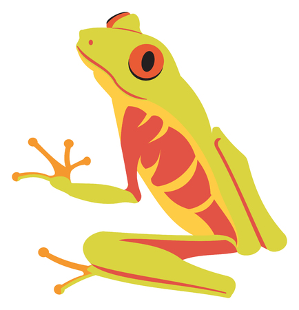 Red Eyed Tree Frog Stock Illustratie