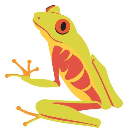 Red Eyed Tree Frog Ilustrace