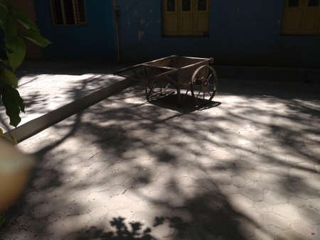 Empty brick roller tray parked within the free space under tree shade