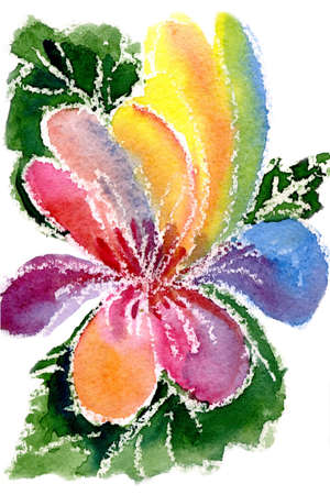 watercolor painting of flowers  Stock Photo - 11792353