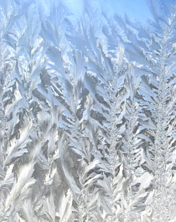 Frosty pattern at a winter window glass Stock Photo - 12814461
