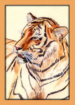 Watercolor painting of tiger  photo