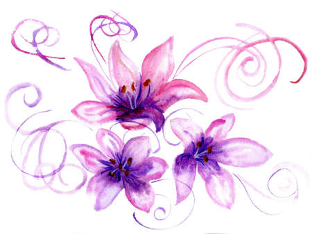 Watercolor flowers a lily on a white background. Stock Photo