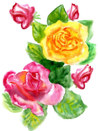 Watercolor a bouquet from roses on a white background