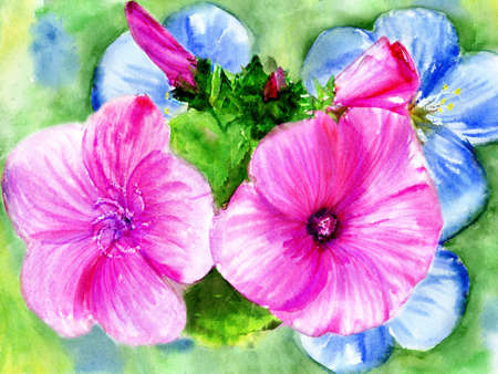 watercolors, rose and blue flowerses photo