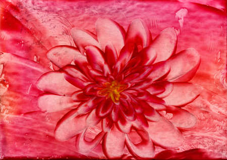 encaustic: watercolors red flower on red background Stock Photo