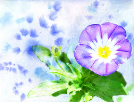 watercolor a dark blue flower on a blue background photo