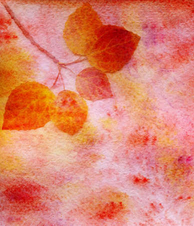 watercolor autumn leaves photo
