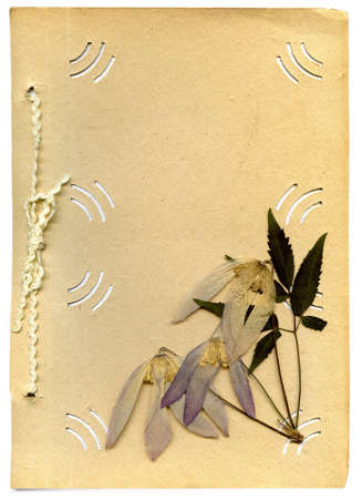 old photo album and dried flower on white background photo