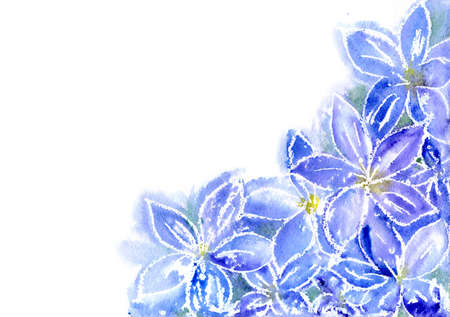 watercolor blue flowers a background for the text