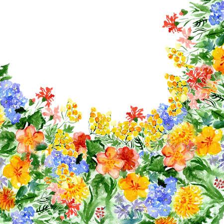 watercolor wild flowers Stock Photo