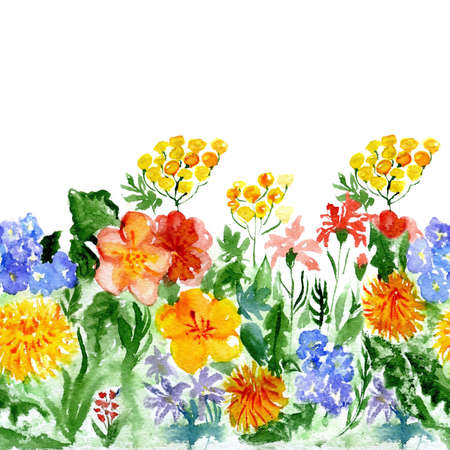 repetition: watercolor repetition wild flowers Stock Photo