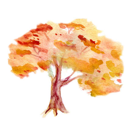watercolor autumn tree. tree on a white background for the text.