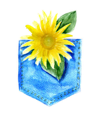 jeans pocket: sunflower in a jeans pocket . watercolor. background for the text
