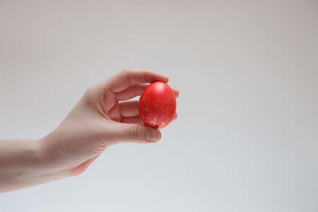 origen animal: just painted Easter egg red in a female hand Foto de archivo