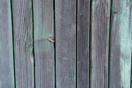texture wooden fence with a green tint