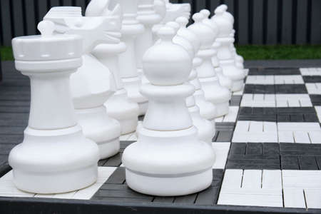 Giant chess game into the park white figure