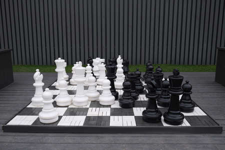 Giant chess game. into the park