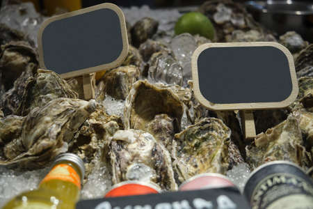 Fresh Atlantic oysters on the store counter