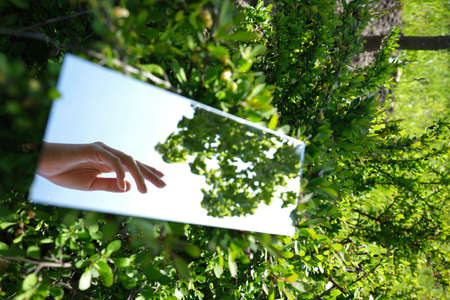 abstraction. female hands and sky are displayed in the mirror. green nature around. close-up